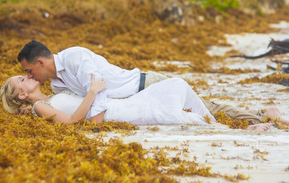 trash-the-dress-seaweed_