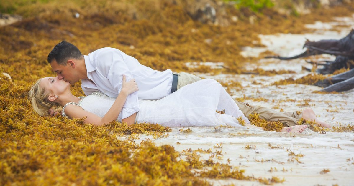Trash the dress seaweed  1200x632 - Trash the Dress